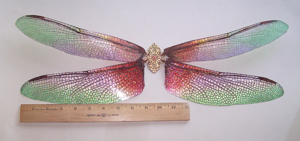 Colored Dragonfly Wings Photo 4
